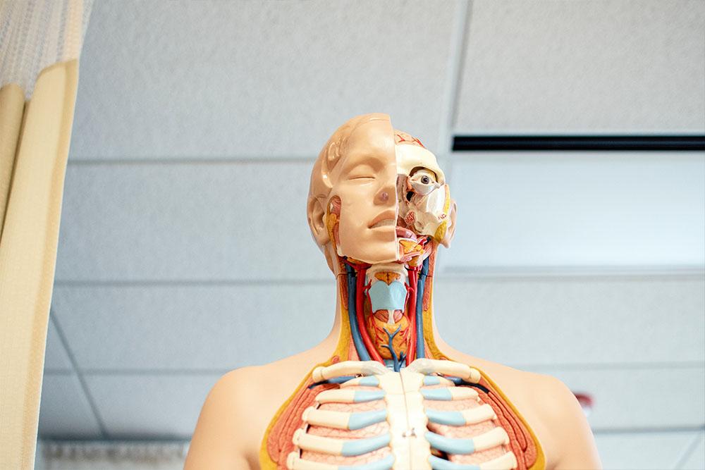 Anatomia patologica i citodiagnostic itv